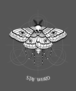 Stay Wired_Hues_Hive